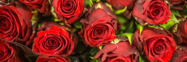 Walentynki tuż tuż …