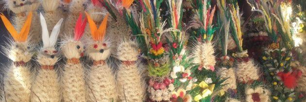 Zapraszamy na zakupy: palmy …